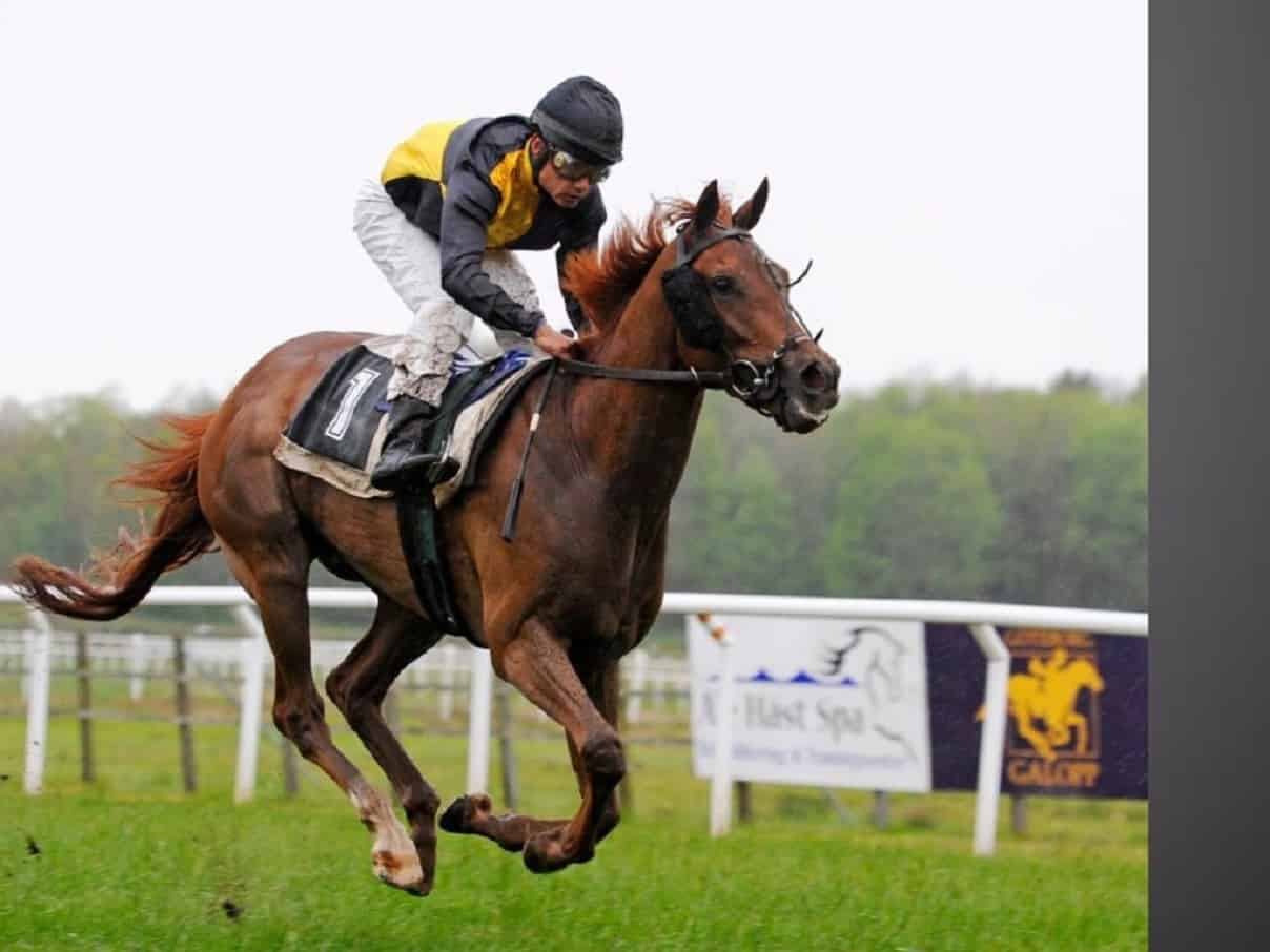 Bookmakers Non Aams per l'Ippica
